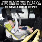 AZ Hot Car Deaths