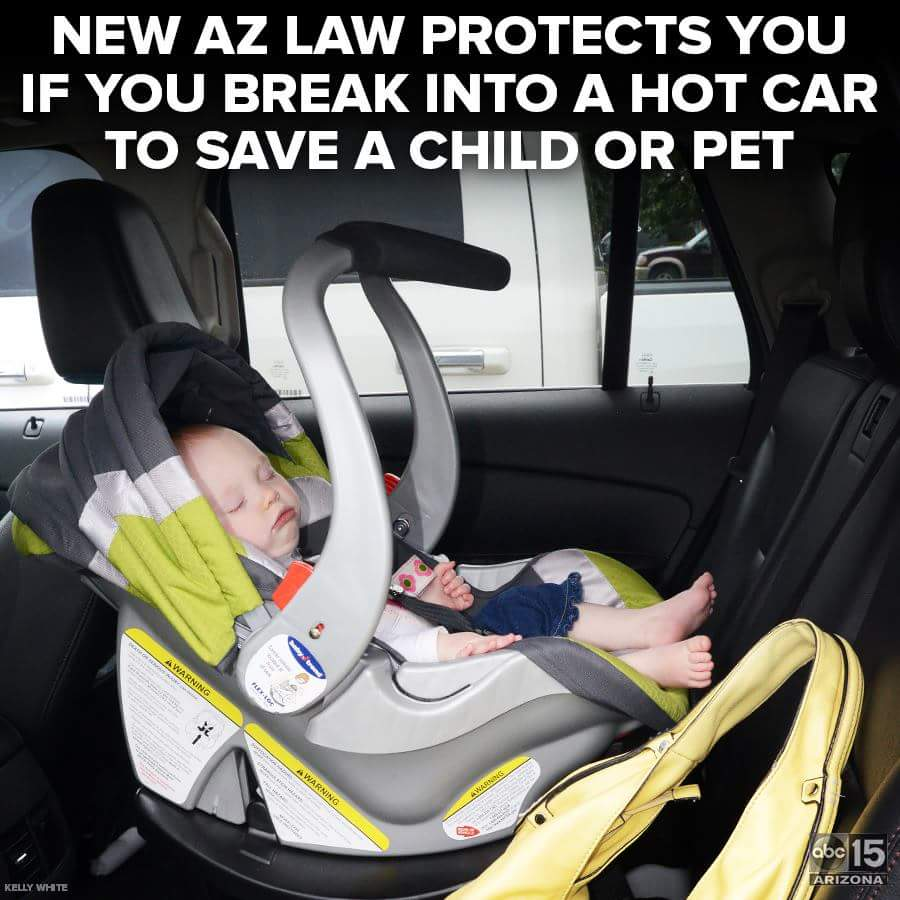 AZ Hot Car Deaths